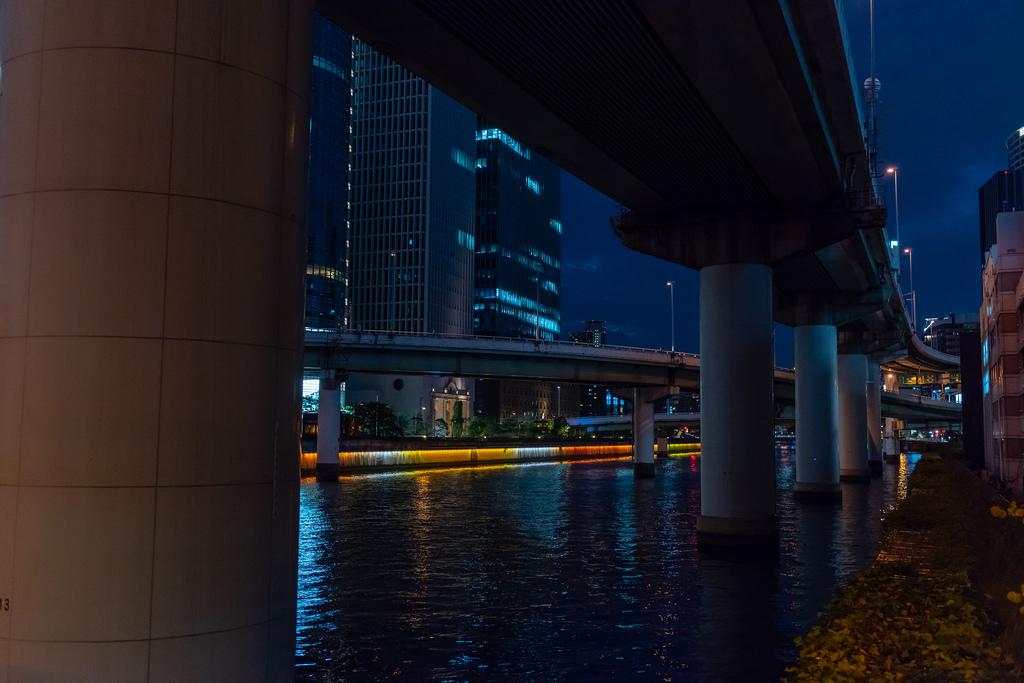 中之島川夜景1